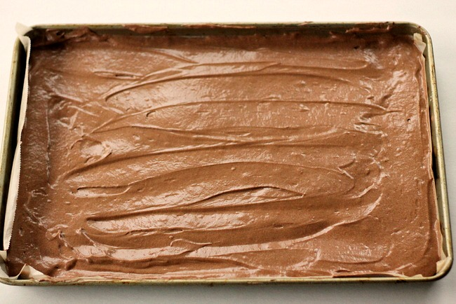 Almond Joy Chocolate Tortee