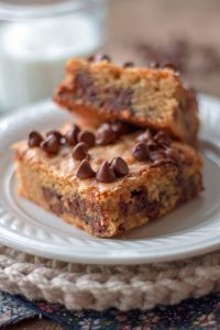 Peanut Butter Chocolate Chip Brownies